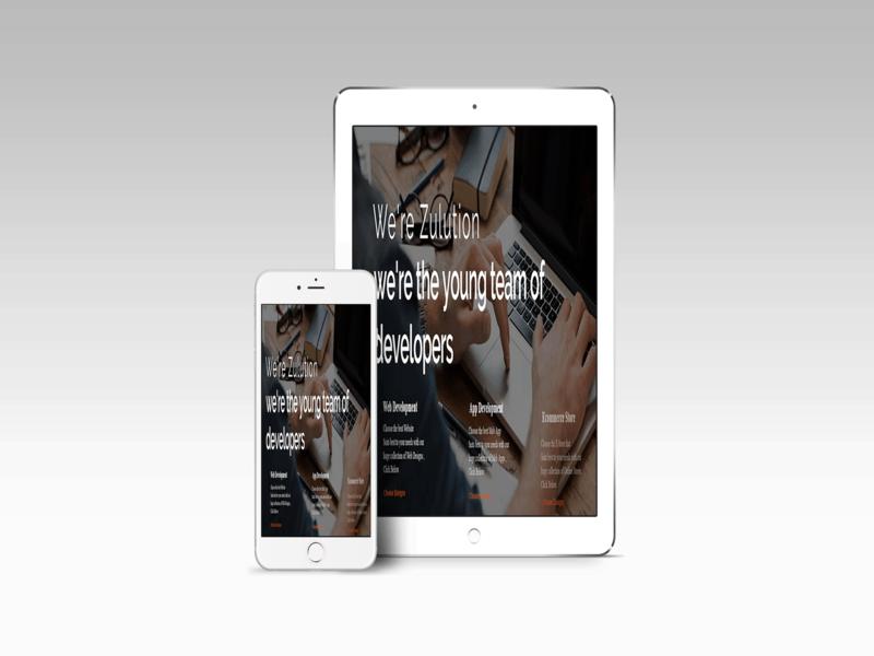 True Mobile Responsive Services in Web design service Miami